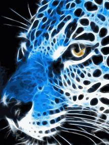 Картина по номерам «Грациозный взгляд» 40x50 см