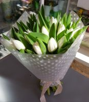 Тюльпан 25шт