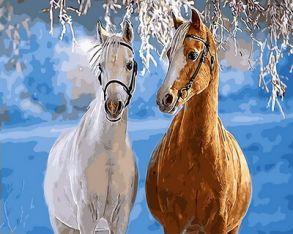 Картина по номерам «Парочка лошадей» 40x50 см