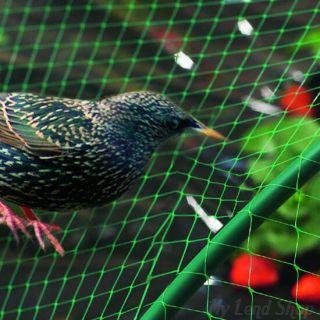 Сетка от птиц для защиты ягод и овощей