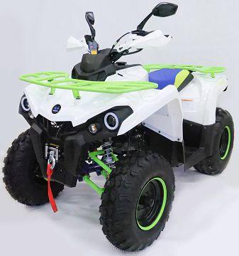 Детский квадроцикл бензиновый Motax ATV Grizlik 200 NEW cc (с лебедкой)