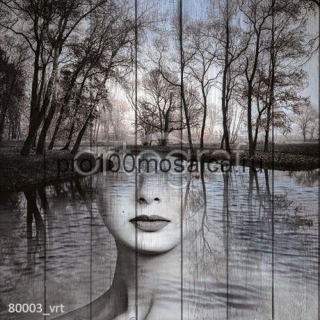 80003 Картина на досках серия ART