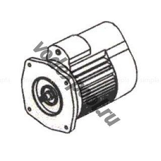 Двигатель к насосу SB30 (220В) Emaux 89021304