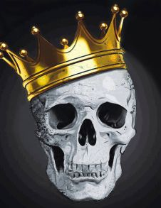 Алмазная мозаика «Стильный череп» 40x50 см