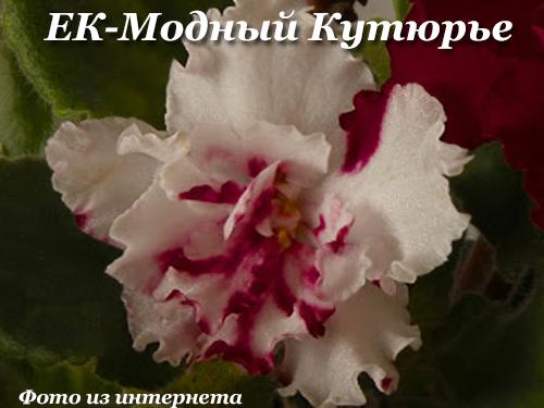 ЕК-Модный Кутюрье (Е.Коршунова)  НОВИНКА