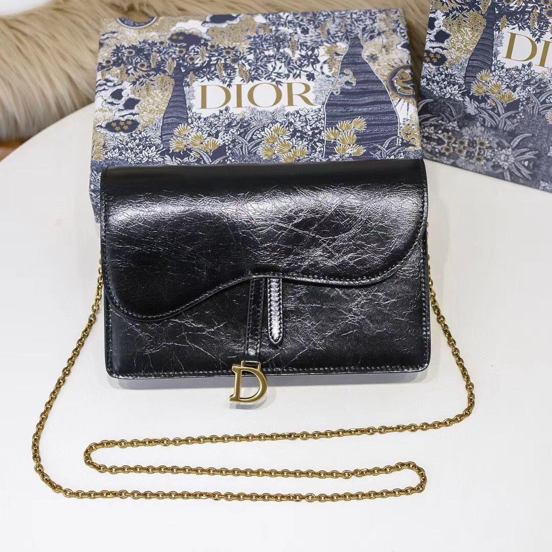 Dior Oblique Woc 22 cm