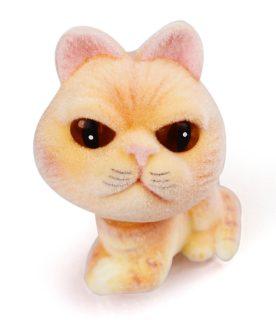Кошка флок. Персик