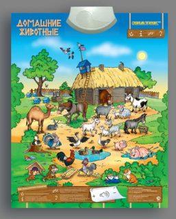 Плакат  эл. Домашние Животные