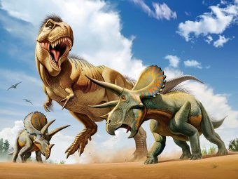 Пазл Super 3D Тираннозавр против трицератопса, 500 детал.