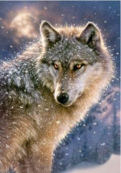 Пазлы 500 Волк
