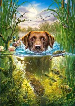 Пазлы 500 Собака в пруду