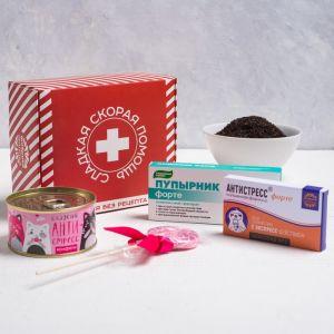 Сладкая аптечка «Сладкая скорая помощь»: леденец 15 г,конфеты 65 г, чай 20 г, шоколад 27 г