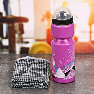 Набор «Sport»: бутылка для воды 800 мл, полотенце 30 см ? 30 см, чехол 2588936