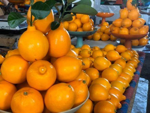 Лимон узбекский (цена за кг)