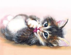 Алмазная мозаика «Милый котенок» 40x50 см