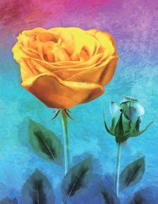 Алмазная мозаика «Желтая роза» 40x50 см