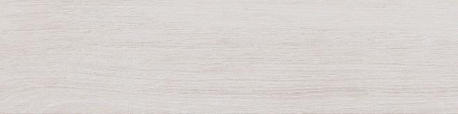 SG400900N | Вяз белый