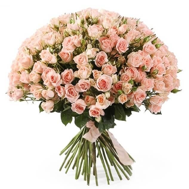Букет из кустовой розы 50см