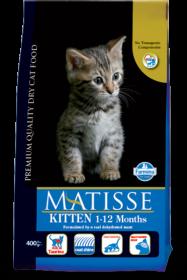 Matisse Kitten (Матис для котят)