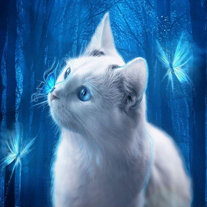 Алмазная вышивка Голубоглазая кошка (30 х 30 см) картина стразами