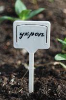 Табличка для посадки растений, 10 шт, белый