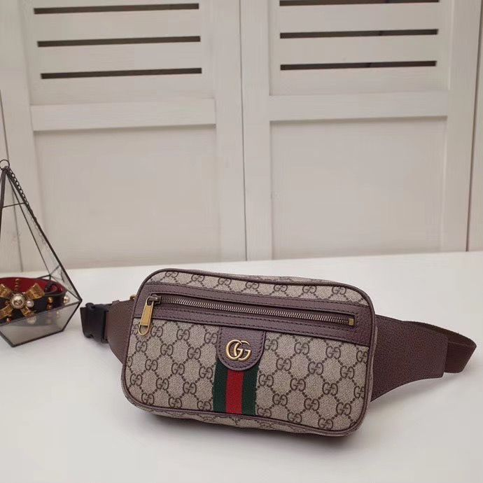 Поясная сумка Gucci Ophidia 24 cm