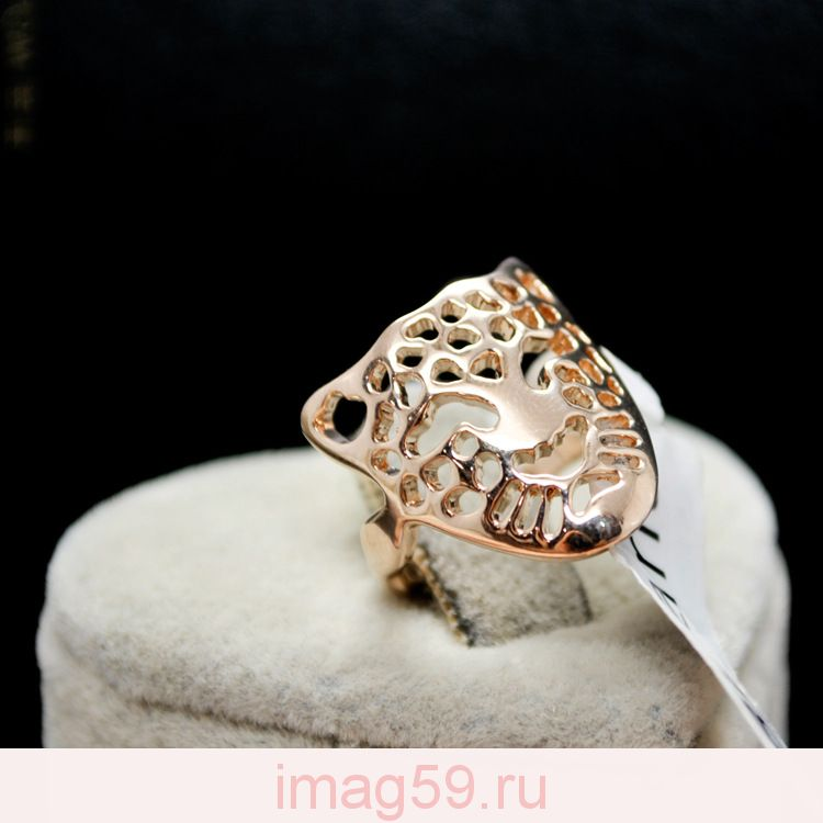 AA5121001 Кольцо