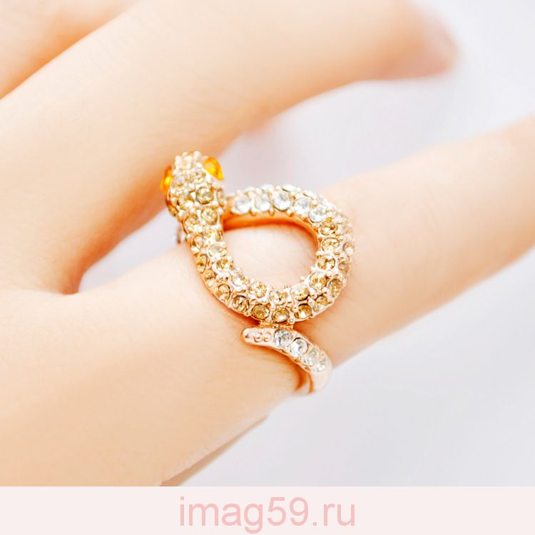 AA6681381 Кольцо