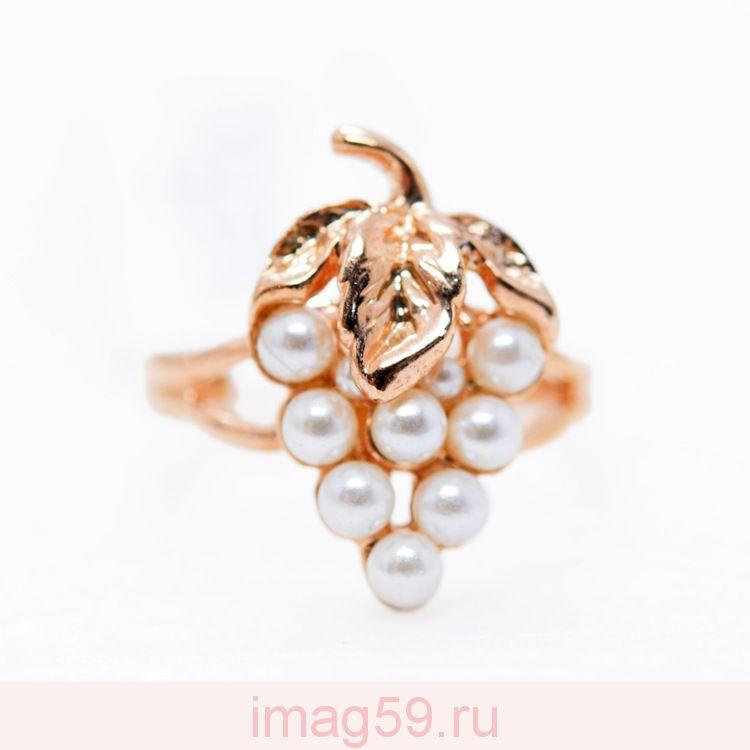 AA1302259 Кольцо