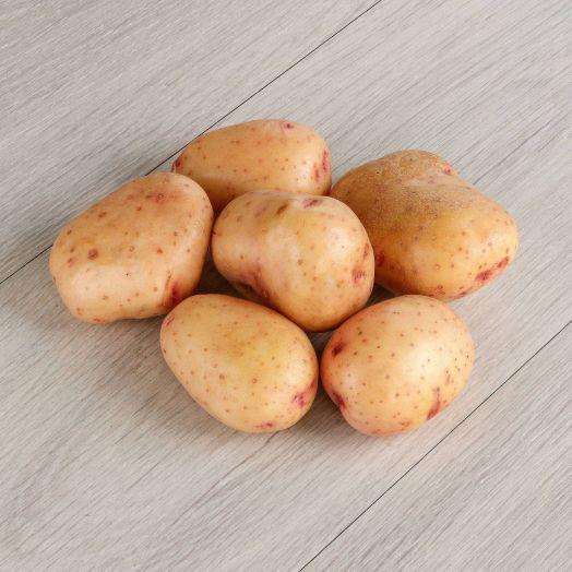 Картофель синеглазка, Тамбов, Россия