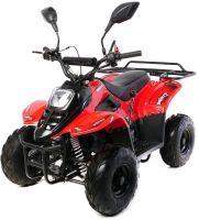 Детский квадроцикл бензиновый Motax Mikro