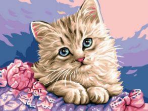 Картина по номерам «Милый котенок» 30x40 см