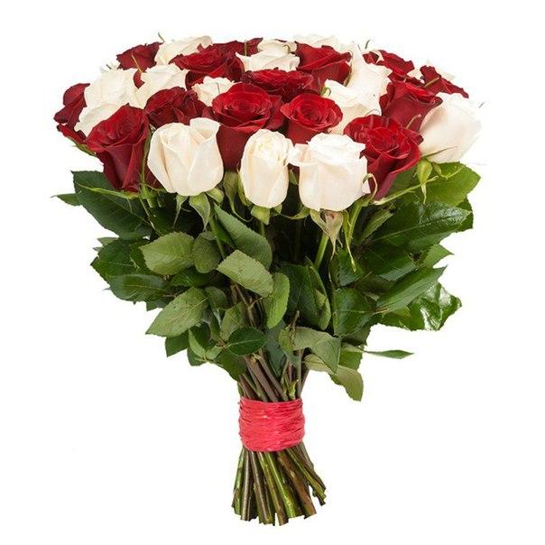 Розы красные и белые 60 см