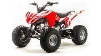 Детский квадроцикл бензиновый Motoland Sport 125