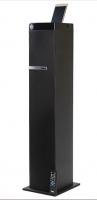 Портативная акустика DIALOG AP-1100