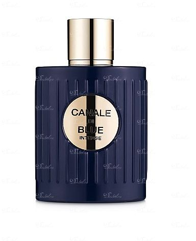 Fragrance World  - Canale Di Blue Intense