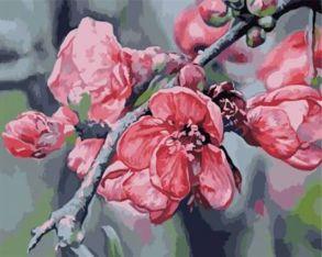 Картина по номерам «Ветка яблони» 40x50 см