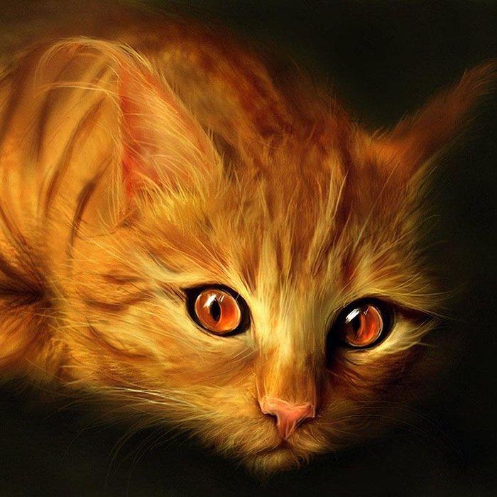 Алмазная вышивка Рыжий кот KM0217 (30 х 30 см) картина стразами