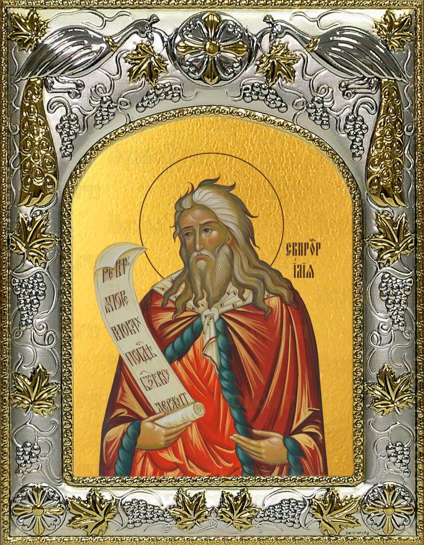 Икона Илия пророк (14х18)