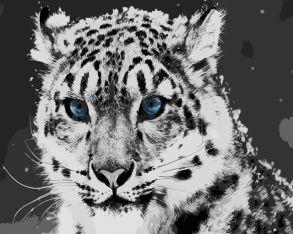 Картина по номерам «Голубоглазый барс» 30x40 см