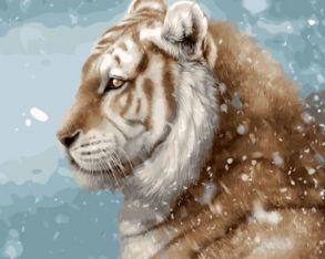 Картина по номерам «Тигр» 40x50 см