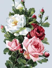 Картина по номерам «Розы» 40x50 см