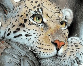 Картина по номерам «Леопард на отдыхе» 30x40 см