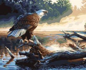 Картина по номерам «Орел на дереве» 40x50 см