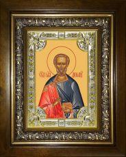 Икона Диомид Тарсянин (Никейский) (18х24)