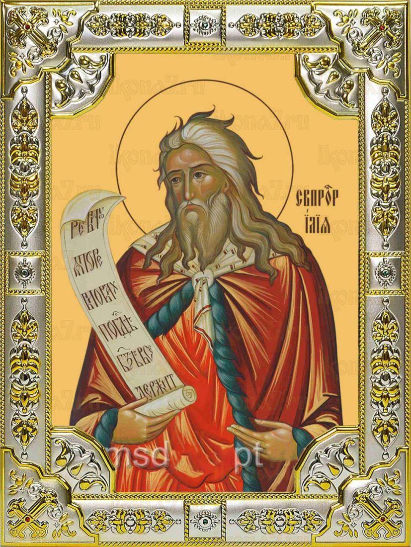 Икона Илия пророк (18х24)