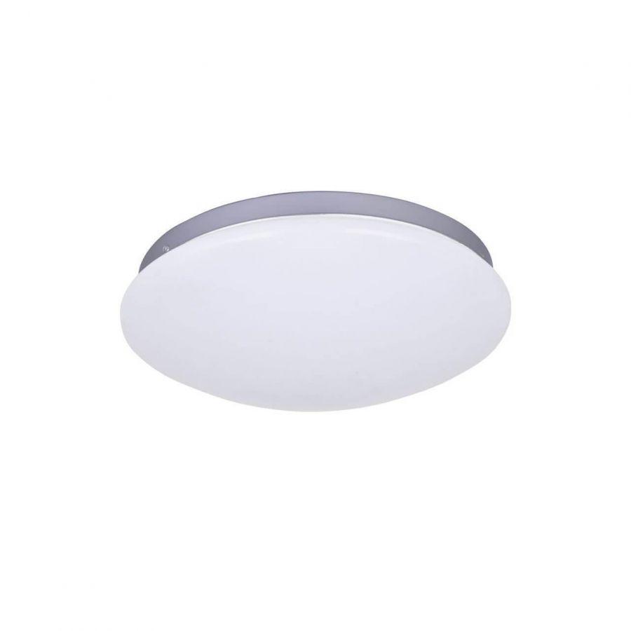 Потолочный светодиодный светильник F-Promo Ledante 2467-2C