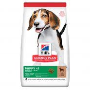 Hill's Puppy Healthy Development Lamb & Rice - Для щенков всех пород с ягненком и рисом (800 гр)