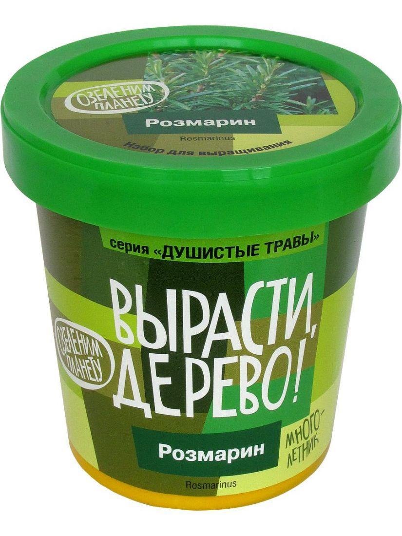Набор для выращивания ВЫРАСТИ ДЕРЕВО! zk-036 Розмарин
