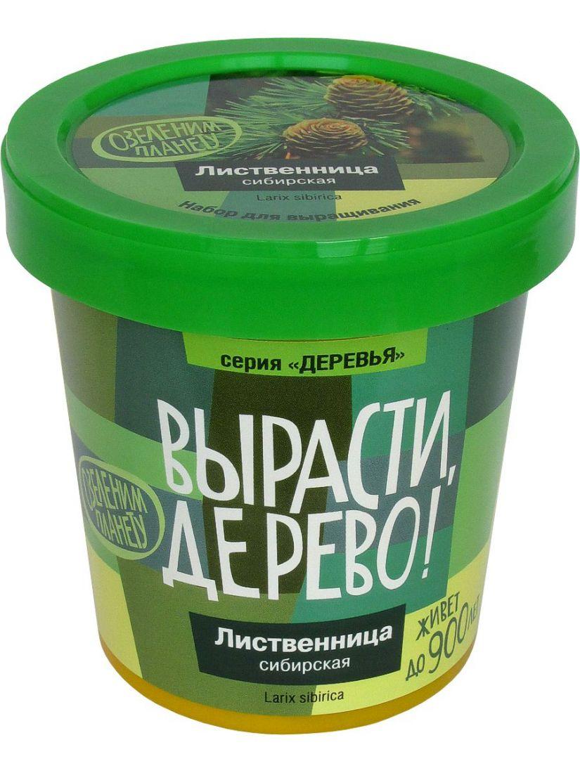 Набор для выращивания ВЫРАСТИ ДЕРЕВО! zk-049 Лиственница сибирская